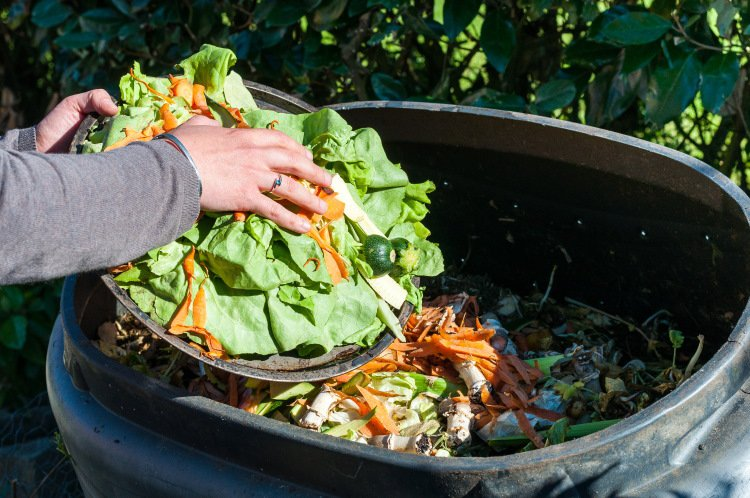 How the Food Sector can Focus on Reducing Food Waste in 2021